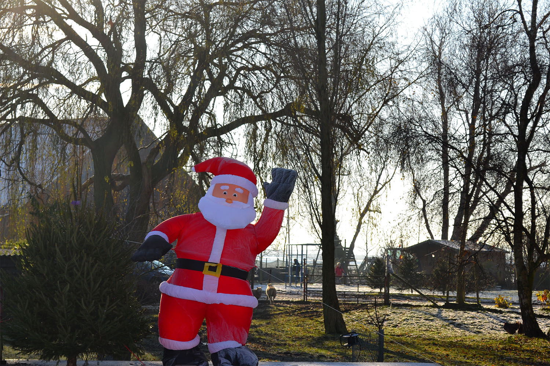 Nordmann Excellent kerstbomen Hoofddorp