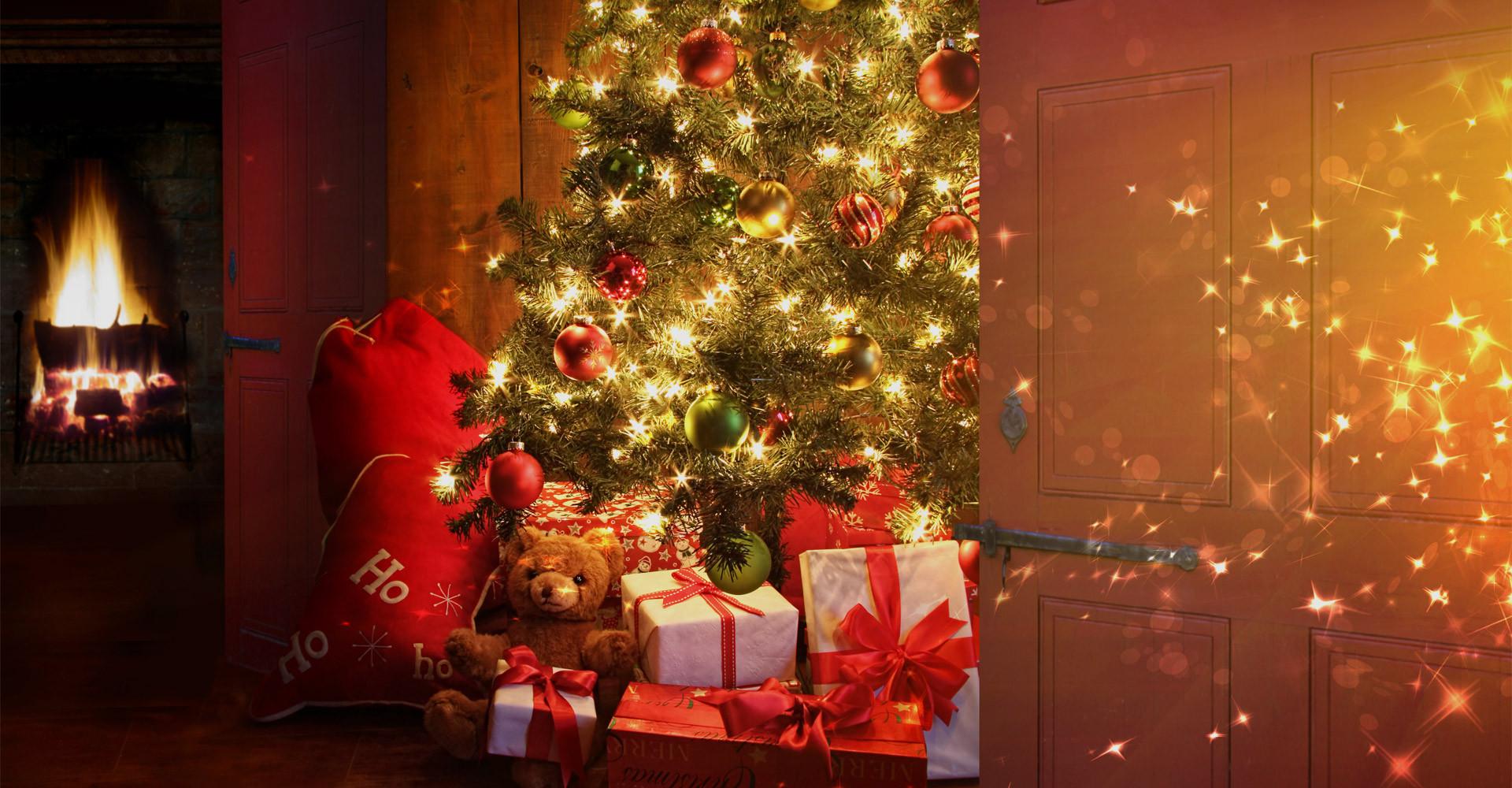De mooiste Nordmann Excellent kerstbomen in Hoofddorp vanaf € 15,-