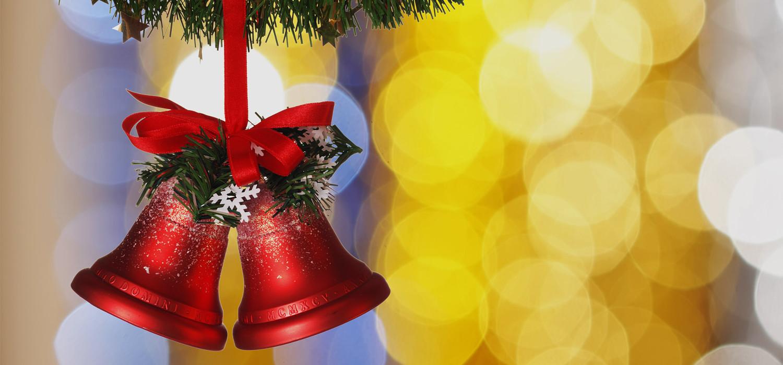 Veelgestelde vragen over Nordmann Excellent kerstbomen in Hoofddorp