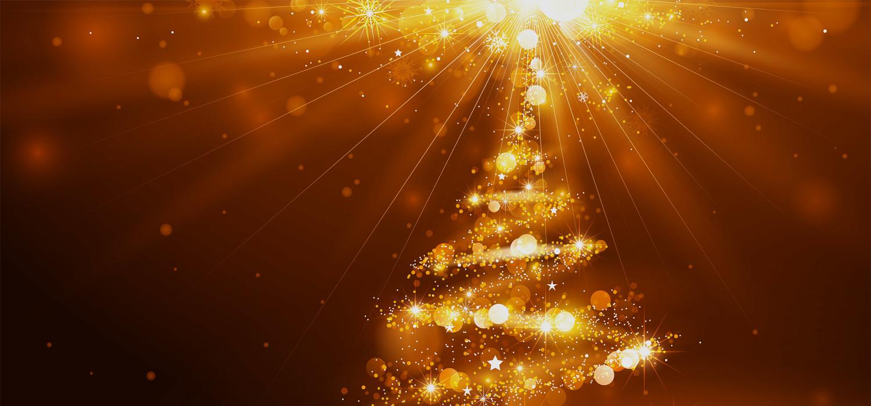 Kerstbomen voor bedrijven in Hoofddorp